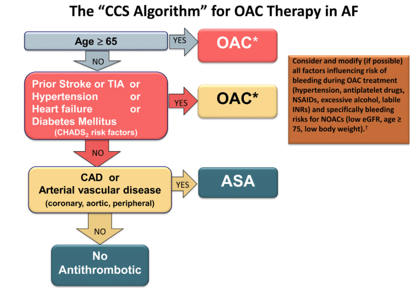 CCS Algorithm Afib Anticoagulation for stroke prevention