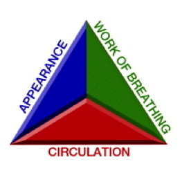 Pediatric-Assessment-Triangle