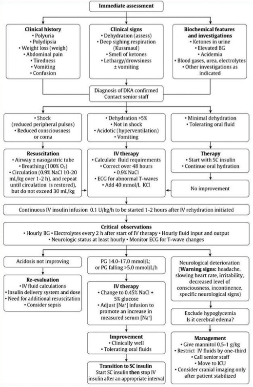 pediatric DKA algorithm