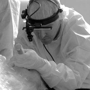 airway strategy mental preparedness procedures richard levitan