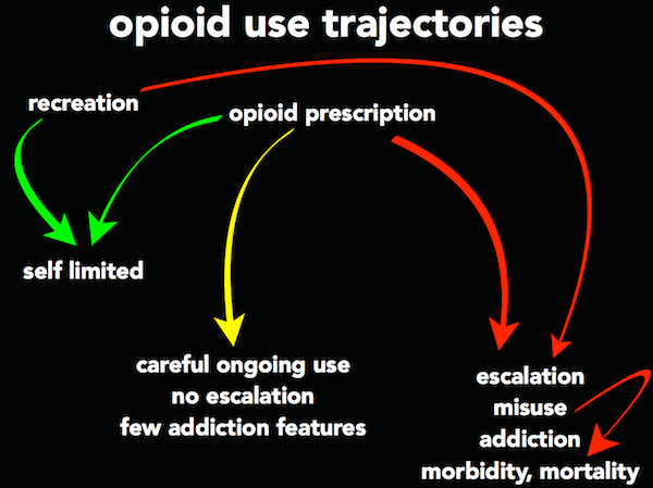 Opiod use trajectories