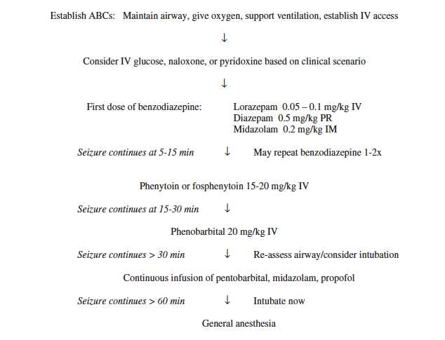 Status Epilepticus Algorithm in emergency management of pediatric seizures