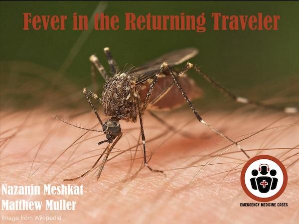 fever in returning traveler