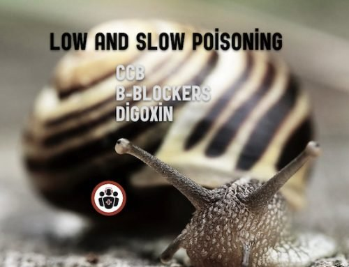 Episode 90 – Low and Slow Poisoning