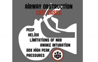 airway obstrution