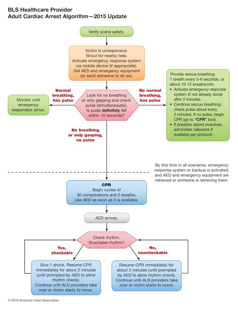 Bls Adult Cardiac Arrest Algorithm 2015 Update Emergency