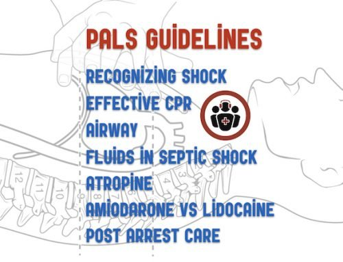 Episode 93 – PALS Guidelines