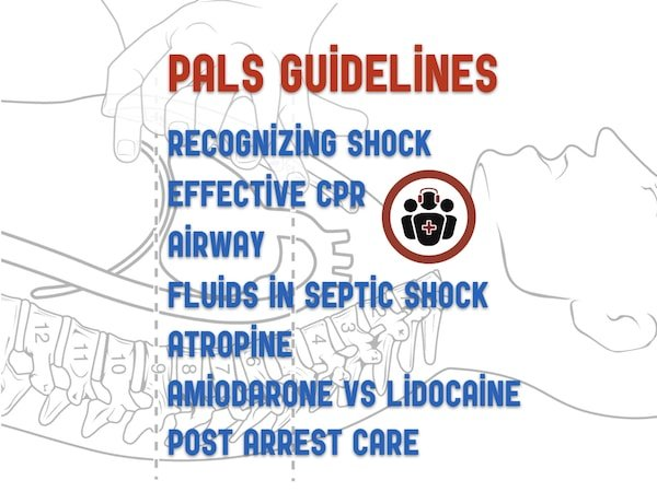 post cardiac arrest petco2 range