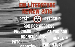 EM literature Review