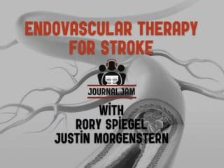 endovascular therapy for stroke