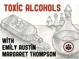 Emergency Management of Toxic Alcohol Poisoning