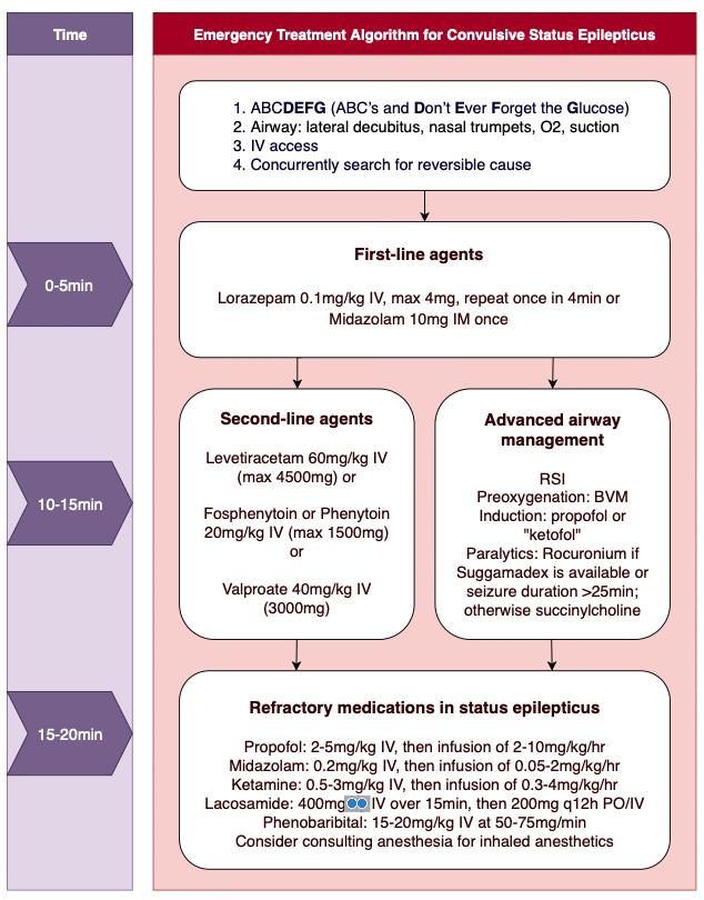 status epilepticus algorithm