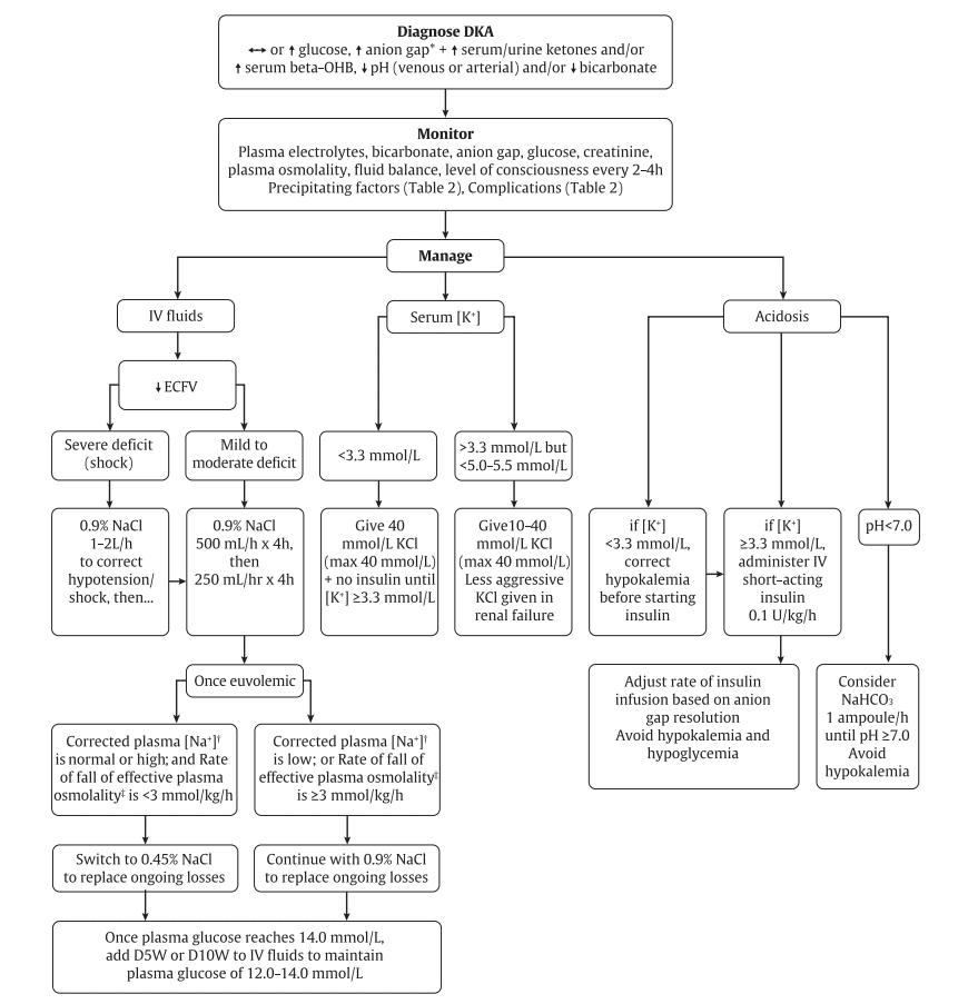 DKA algorithm
