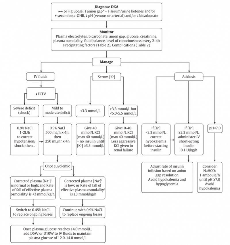 DKA algorithm Canadian Guidelines 2018