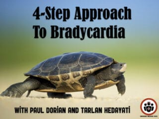 4 step approach to bradycardia