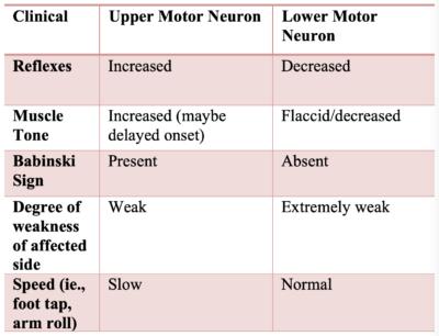 upper vs lower motor neuron weakness