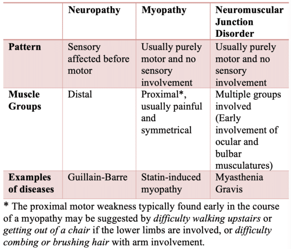 Differentiating Neuropathy, Myopathy, and Neuromuscular Junction Disorders